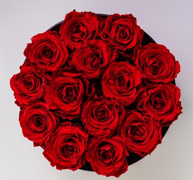 Wat is de betekenis van rozen?